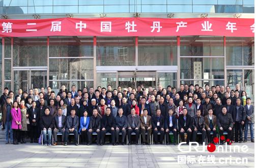 麟源牡丹总经理王连岗接受中国国际在线专访