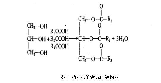 常见植物油脂的成份有哪些?