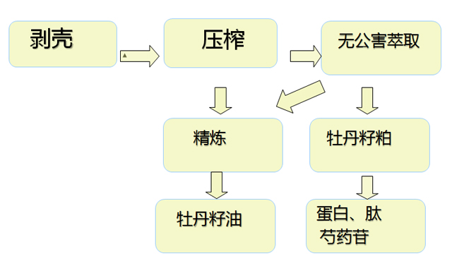 压榨牡丹籽油生产工艺流程