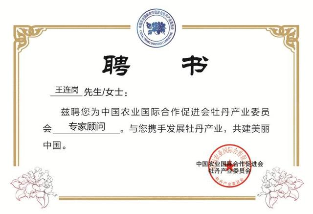 中国农业国际合作促进会聘请麟源牡丹籽油总经理王连岗为专家顾问