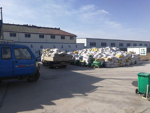 麟源牡丹收购了大量牡丹籽,解百姓之难