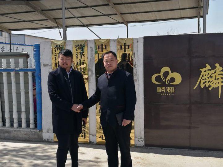 深圳国商通董事长李树锋老师来访麟源牡丹考察