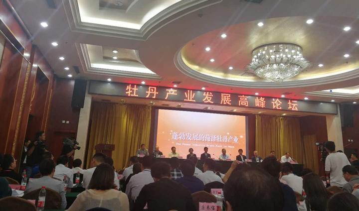 麟源牡丹王连岗出席牡丹产业发展岑岭论坛