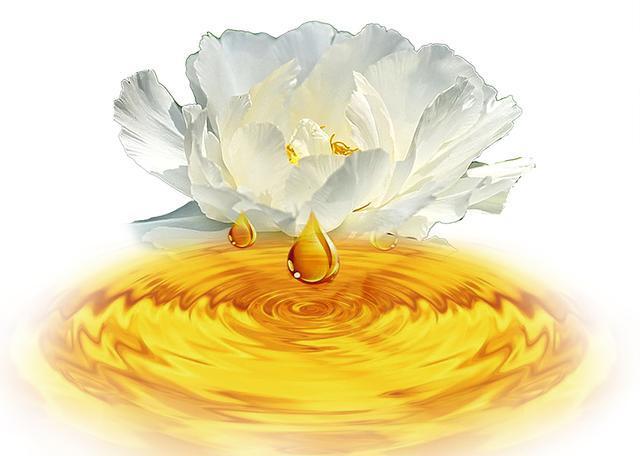 麟源牡丹籽油的成分以及功效