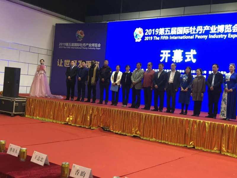 王连岗出席4月19日第五届国际牡丹产业博览会开幕式
