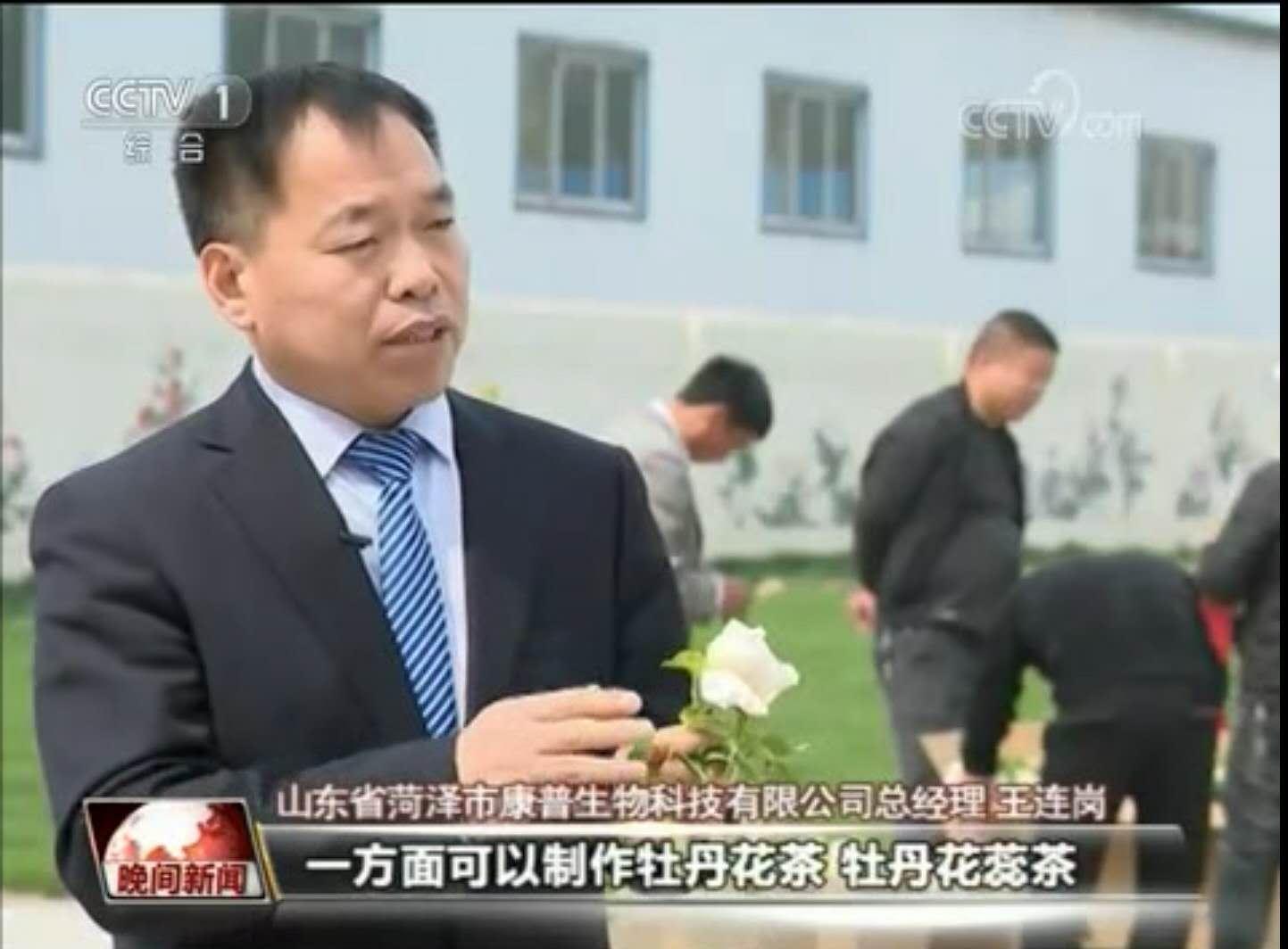 牡丹花里的百亿大产业——麟源牡丹公司总经理王连岗接受央视采访