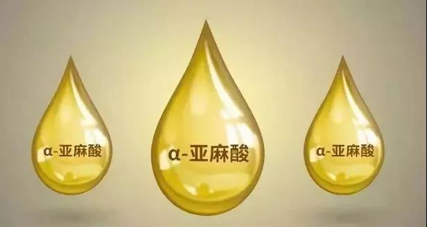 哪种食用油适合宝宝?不是橄榄油,不是花生油……