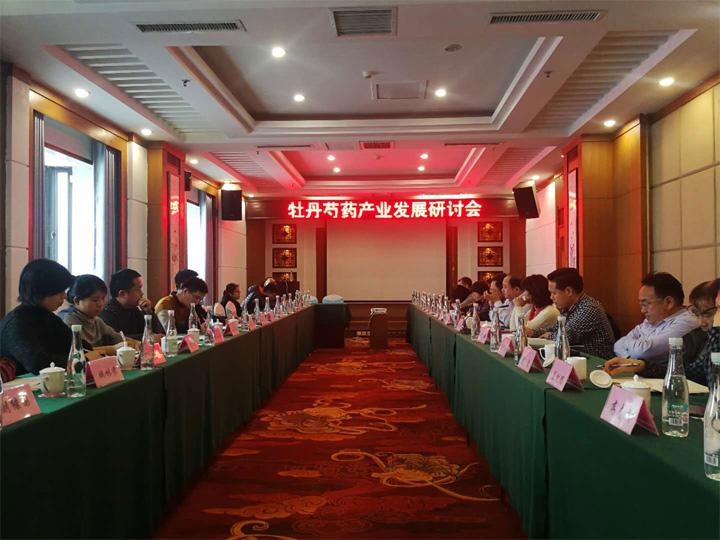 麟源牡丹总经理王连岗参加牡丹芍药产业发展研讨会